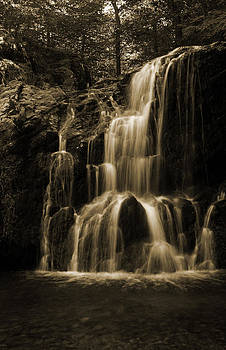 Carolyn Stagger Cokley - waterfall sepia