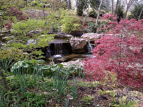 Waterfall by Sherri Williams
