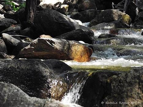Waterfall Stream by Natalie Rogers