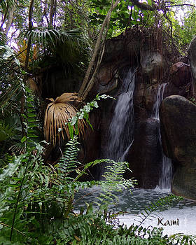Waterfall Tropic  by Kami Catherman