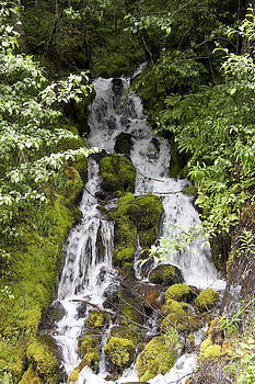 S and S Photo - Waterfalls - 0004