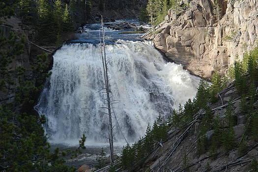 Waterfalls at Yellowstone by Yvette Pichette