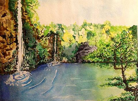 Waterfalls by Denise Tanaka