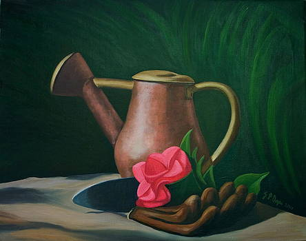 Watering Can and Camelia by Stephen Degan