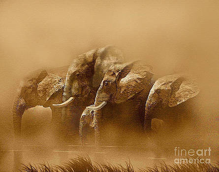 Watering Hole by Robert Foster