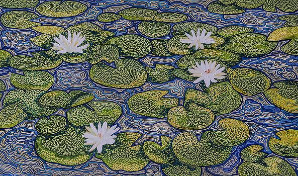 Waterlilies by Dorota Quiroz