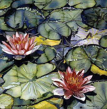 Waterlilies by Tim Mullen