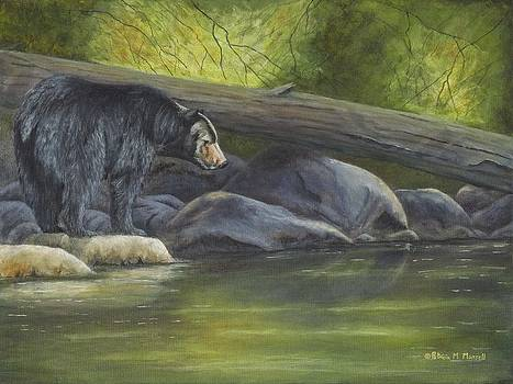 WATER'S EDGE- Black Bear by Patricia Mansell