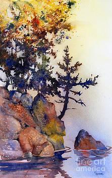 Water's Edge by Teresa Ascone