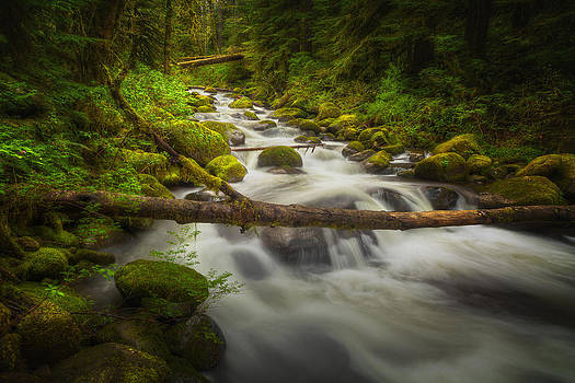 Waters of Larch Mountain by Stuart Deacon