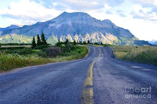 Waterton Way  by Judy Grant