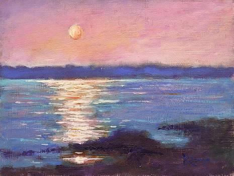 Waterway Sunset by Bernie Rosage Jr