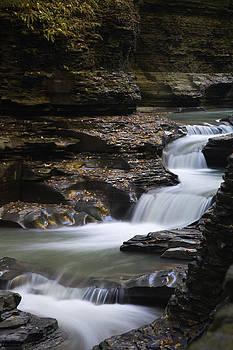 Watkins Glen State Park by Kim Aston