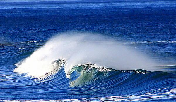 Wave by Peter Kotzbach