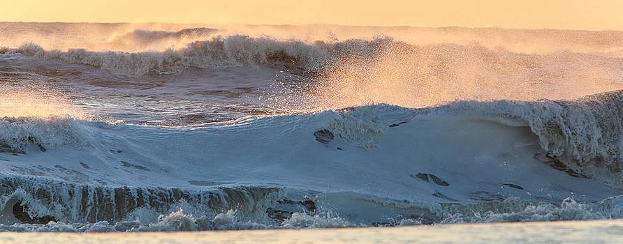Wave Wake Up  by Nicole Robinson