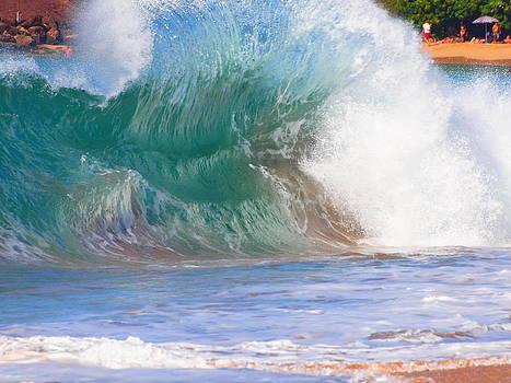 Waves at Play by Jim Moore