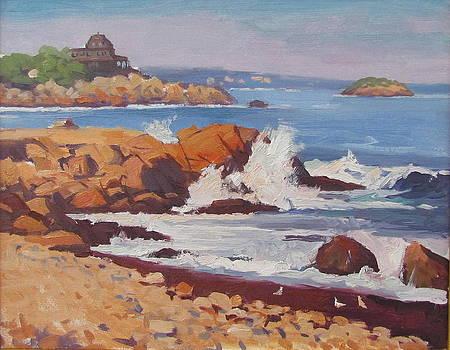 Waves Crashing In by Dianne Panarelli Miller