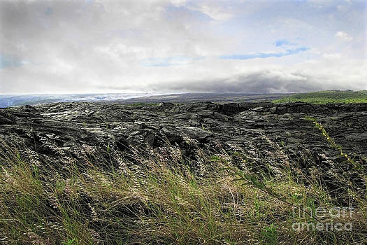 Ellen Cotton - Waves of clouds sea lava and grass