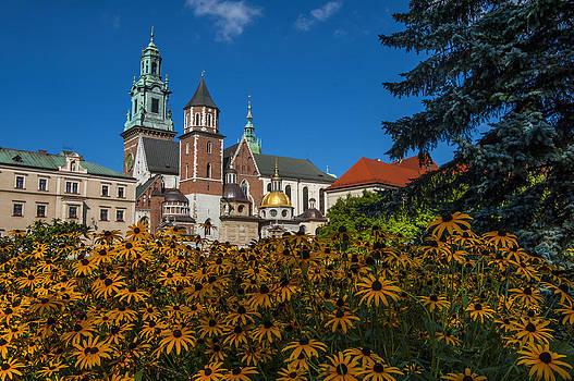 Pam  Elliott - Wawel Castle in Krakow Poland with Flowers