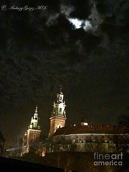 Wawel Royal Castle - Cracow - Kroke - Poland made in Andrzej Goszcz. by  Andrzej Goszcz