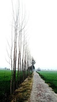 Jyoti Vats - Way to heaven
