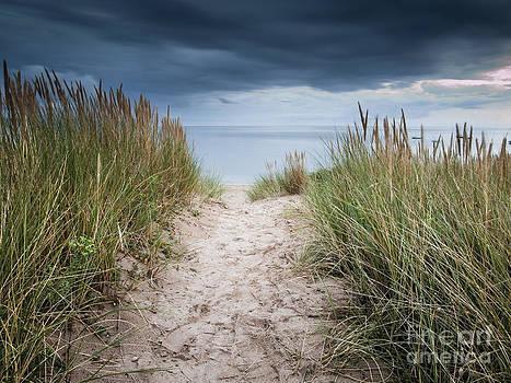 Way to the Beach by David Hanlon