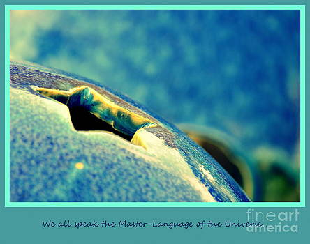 Susanne Van Hulst - We All Speak the Master Language of The Universe