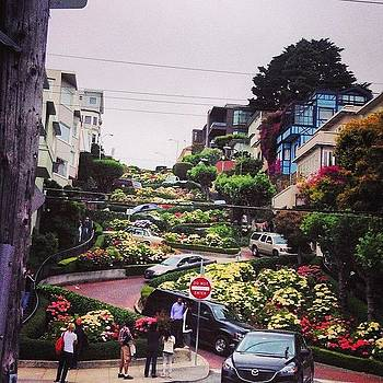We Made It Down Lombard St. Before We by Maureen Bates