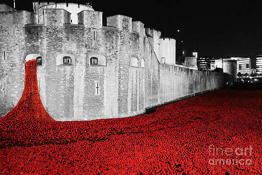 We Will Remember Them by Tom Hard