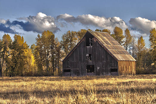 Weathered Barn by Craig Sanders