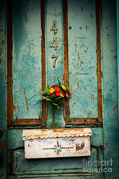 Weathered Door by Patty Descalzi
