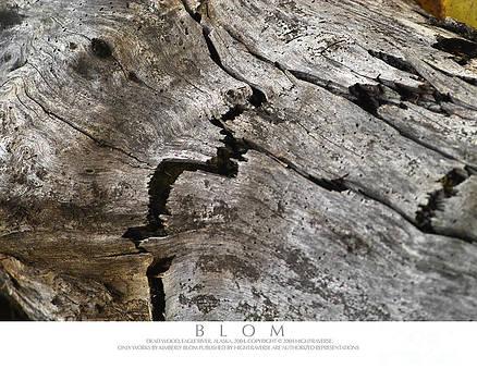 Weathered Log by Kimberly Blom-Roemer