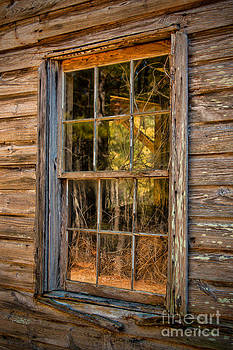 Dave Bosse - Weathered Window