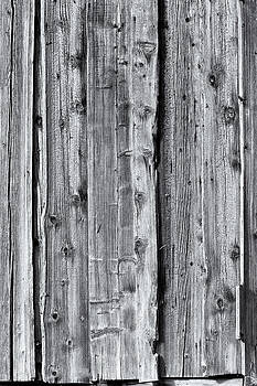 Charles Lupica - Weathered wood 4