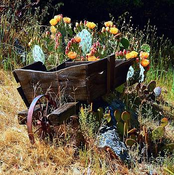 Patrick Witz - Weathered Wooden Wheelbarrow