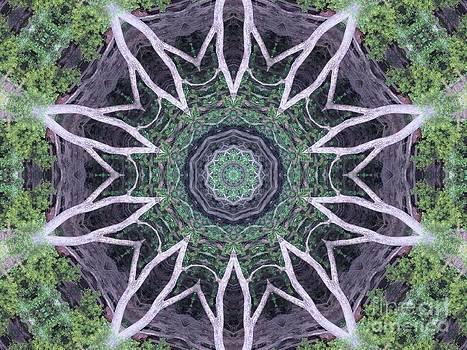 Web Tree by Annette Allman