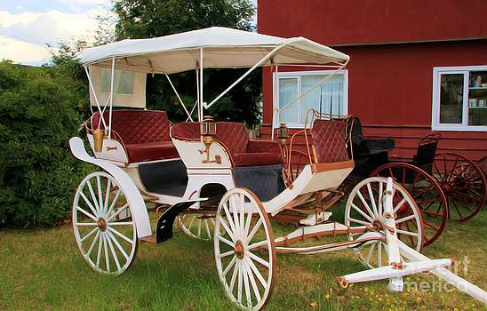 Roland Stanke - Wedding Cart