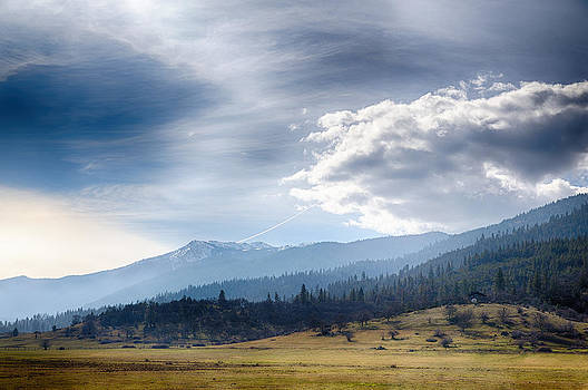 Weed California by Digiblocks Photography