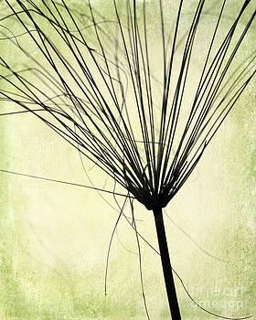 Sabrina L Ryan - Weed in Green