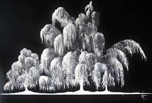 Weeping Willow in ice by Thomas Kolendra