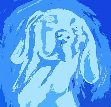 Weimaraner Blau by Holly Picano