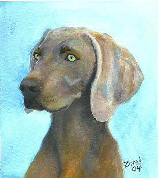 Weimaraner Dog by Mary Jo Zorad