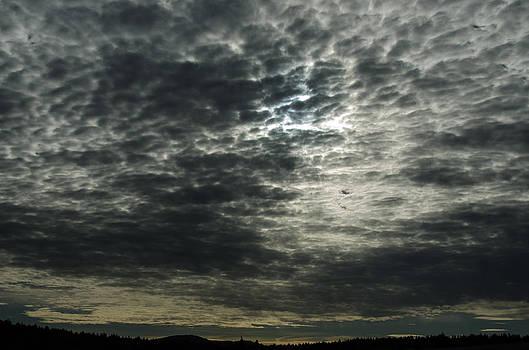 Weird Clouds by Linda Larson
