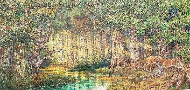 Wekiva River Florida by Sheila Tibbs