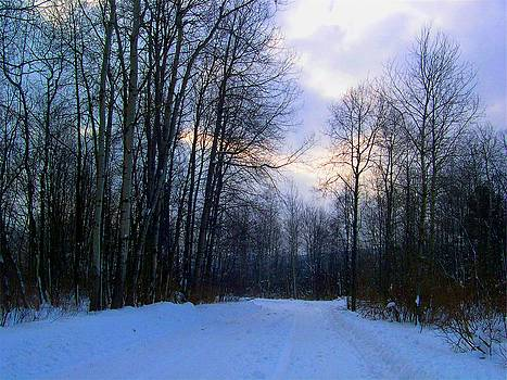 Well Road - Winter by Kathleen Palermo