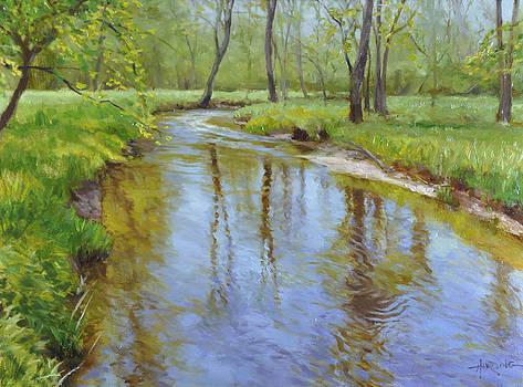 West Branch by Scott Harding