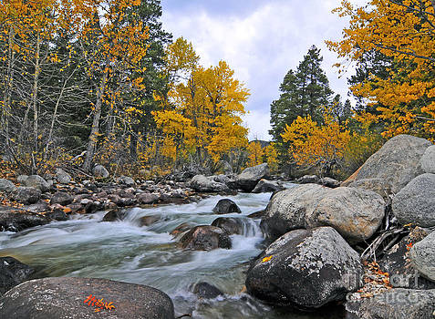 West Fork of Rock Creek Fall Colors by Gary Beeler