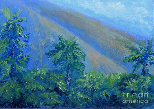Fred Wilson - West Maui Mountains