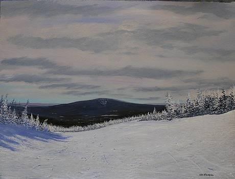 West Meadow by Ken Ahlering