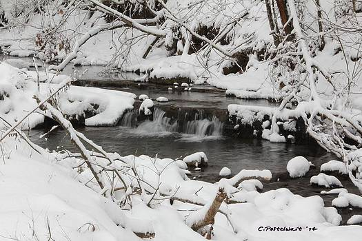West Virginia Winter by Carolyn Postelwait